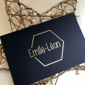 Geboorte Emile-Léon