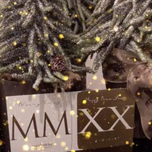 Nieuwjaar MMIXX